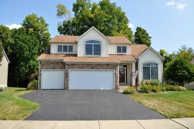 Pickerington Single Family Home For Sale: 800 Delong Street