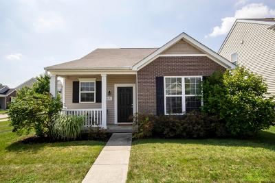 Westerville Single Family Home For Sale: 6131 Deansboro Drive