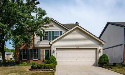 columbus Single Family Home For Sale: 5399 Riverbrook Drive