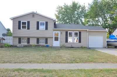 Grove City Single Family Home For Sale: 4141 Demorest Road