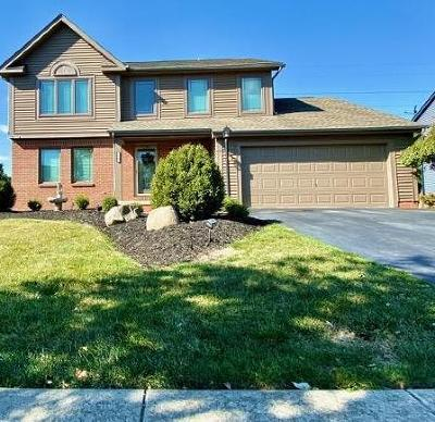 Grove City Single Family Home For Sale: 3543 Lake Mead Drive