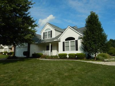 Single Family Home For Sale: 336 Central Station Drive