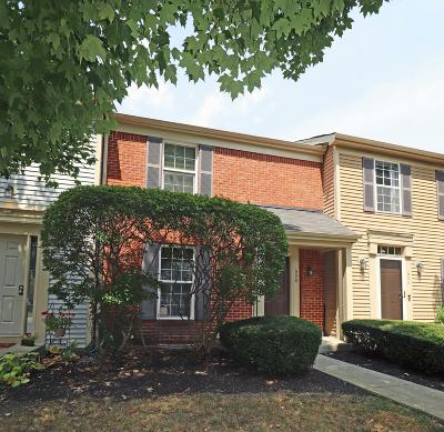 Powell Single Family Home For Sale: 690 Slate Hollow Court