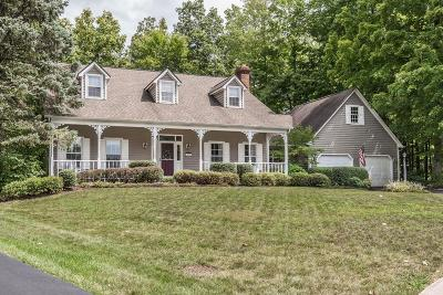 Gahanna Single Family Home For Sale: 317 Eastchester Court