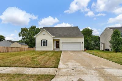 Franklin County, Delaware County, Fairfield County, Hocking County, Licking County, Madison County, Morrow County, Perry County, Pickaway County, Union County Single Family Home For Sale: 179 Brandy Mill Drive