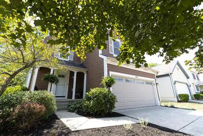Franklin County, Delaware County, Fairfield County, Hocking County, Licking County, Madison County, Morrow County, Perry County, Pickaway County, Union County Single Family Home For Sale: 1569 Bendelow Drive