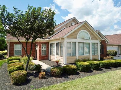 Franklin County, Delaware County, Fairfield County, Hocking County, Licking County, Madison County, Morrow County, Perry County, Pickaway County, Union County Single Family Home For Sale: 4583 Collingwood Pointe Place