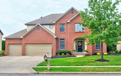 Westerville Single Family Home For Sale: 6734 Meadow Glen Drive