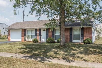 Franklin County, Delaware County, Fairfield County, Hocking County, Licking County, Madison County, Morrow County, Perry County, Pickaway County, Union County Single Family Home For Sale: 3434 Dillward Drive