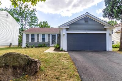 Franklin County, Delaware County, Fairfield County, Hocking County, Licking County, Madison County, Morrow County, Perry County, Pickaway County, Union County Single Family Home For Sale: 2165 Green Island Drive