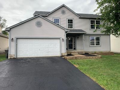 Franklin County, Delaware County, Fairfield County, Hocking County, Licking County, Madison County, Morrow County, Perry County, Pickaway County, Union County Single Family Home For Sale: 1744 Fern Trail Drive