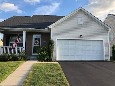 Franklin County, Delaware County, Fairfield County, Hocking County, Licking County, Madison County, Morrow County, Perry County, Pickaway County, Union County Single Family Home For Sale: 6033 Follensby Drive Drive