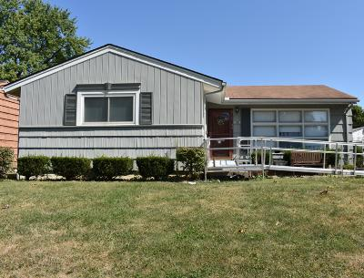 Franklin County, Delaware County, Fairfield County, Hocking County, Licking County, Madison County, Morrow County, Perry County, Pickaway County, Union County Single Family Home For Sale: 4564 Broadhurst Drive