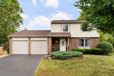 Powell Single Family Home For Sale: 2154 Ladue Drive