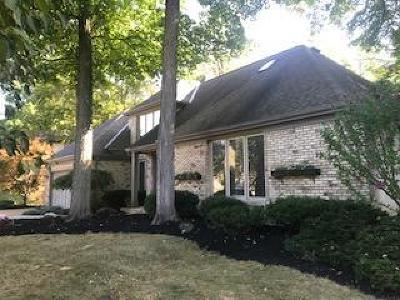 Lewis Center OH Single Family Home For Sale: $371,990