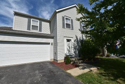 Grove City Single Family Home For Sale: 2567 Delamaine Drive