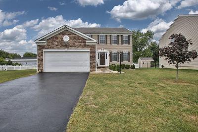 Walker Pointe Single Family Home For Sale: 136 Edmonds Drive