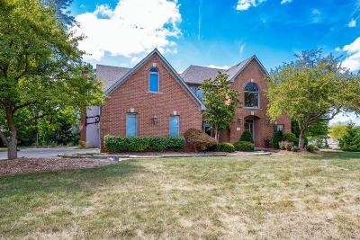 Powell Single Family Home For Sale: 73 Sycamore Ridge Drive