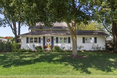 Johnstown Single Family Home For Sale: 14841 Robins Road