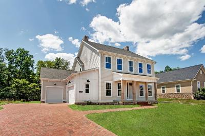 Grove City Single Family Home For Sale: 1147 Pinnacle Club Drive