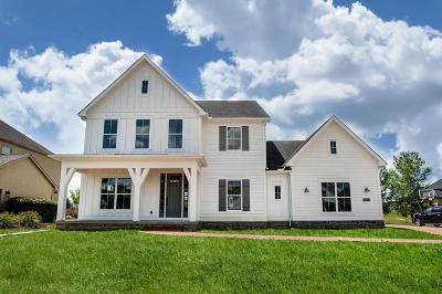 Grove City Single Family Home For Sale: 4572 Hirth Hill Road E