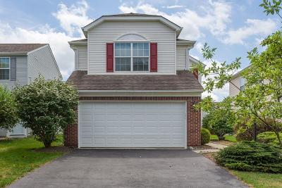 Hilliard Single Family Home For Sale: 5805 Brinkwater Boulevard