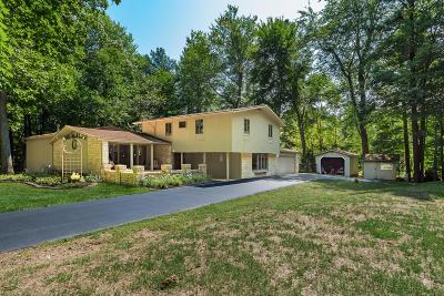 Gahanna Single Family Home For Sale: 4490 Shull Road