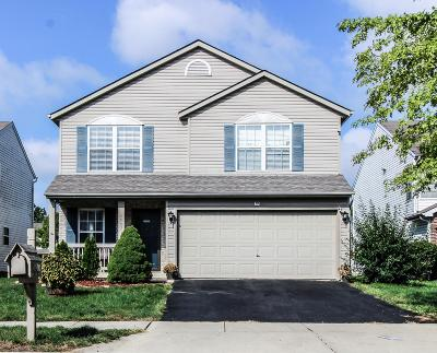 Grove City Single Family Home For Sale: 2007 Jacinth Court