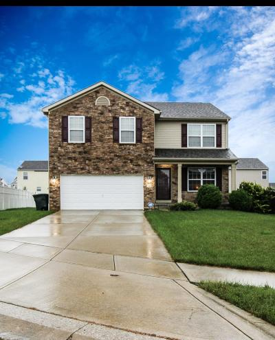Blacklick Single Family Home For Sale: 722 Alexia Court