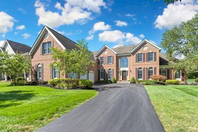 Dublin Single Family Home For Sale: 4927 Gillingham Way