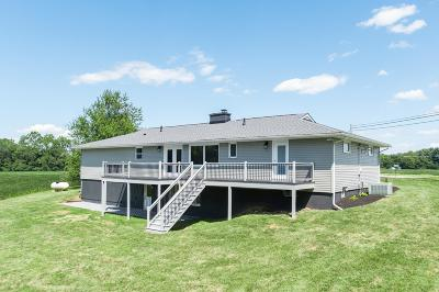 Delaware County, Franklin County, Union County Single Family Home For Sale: 2133 Panhandle Road
