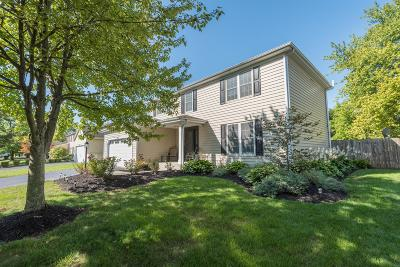 Hilliard Single Family Home For Sale: 3273 Reed Point Drive