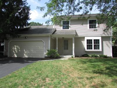 Dublin Single Family Home For Sale: 6065 Renfield Drive