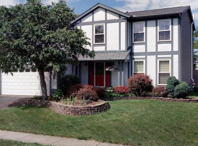 Hilliard Single Family Home For Sale: 5985 Waterview Drive