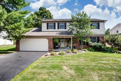 Gahanna Single Family Home For Sale: 516 Stedway Court