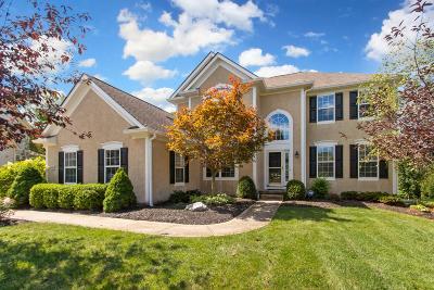 Dublin Single Family Home For Sale: 4397 Beech Wood Loop