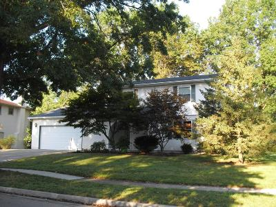 Westerville Single Family Home For Sale: 91 Buckeye Street