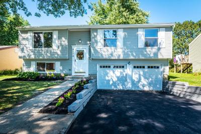 Gahanna Single Family Home For Sale: 4174 Little Pine Drive