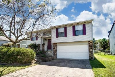 Westerville Single Family Home For Sale: 413 Huber Village Boulevard