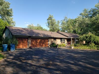 Delaware County, Franklin County, Union County Single Family Home For Sale: 5989 Dublin Road