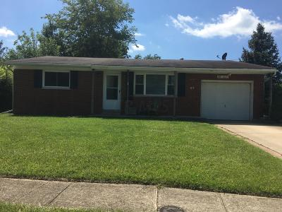 Clinton County Single Family Home For Sale: 57 Krebs Drive
