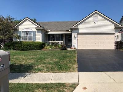 Westerville Single Family Home For Sale: 6728 Leapsway Drive