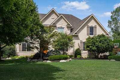 Dublin Single Family Home For Sale: 8151 Winchcombe Drive