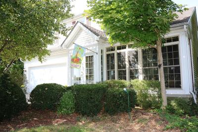 Blacklick Single Family Home For Sale: 1126 Willow Brook Crossing Court