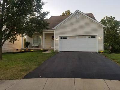 Grove City Single Family Home For Sale: 3368 Brook Spring Drive