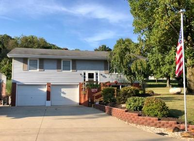Newark Single Family Home For Sale: 100 Terry Drive