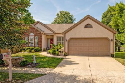Westerville Single Family Home For Sale: 1245 Flagstone Square