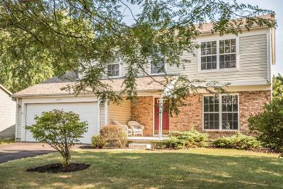 Union County Single Family Home For Sale: 1345 Village Drive