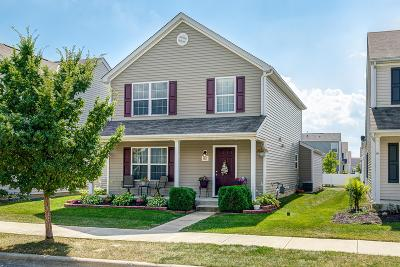 Dublin Single Family Home For Sale: 5817 Ivy Branch Drive
