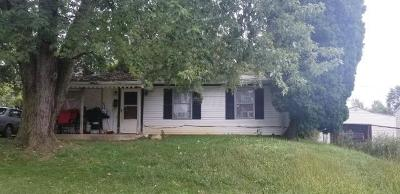 Johnstown Single Family Home For Sale: 387 Hillview Drive